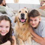 Steuerrecht: Aufwendungen für die Betreuung eines Haustieres